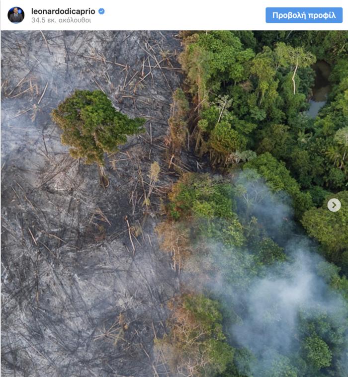 Λεονάρντο Ντι Κάπριο και Στινγκ στη μάχη για τον Αμαζόνιο
