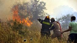 Σε εξέλιξη πυρκαγιά στους Δελφούς- Ενισχύθηκαν οι δυνάμεις
