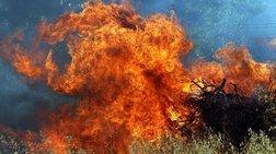 Αλεξανδρούπολη: Μεγάλη φωτιά κοντά σε οικισμό στην Καβησό
