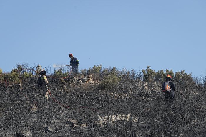 Εικόνες από τη φωτιά στην Πεντέλη - εικόνα 2