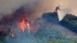 47 δασικές πυρκαγιές σε μια ημέρα-η πρόβλεψη κινδύνου για το Σάββατο