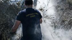 Φωτιά στην Ανδρίτσαινα: Νεκρός ένας άνδρας που βρισκόταν κοντά