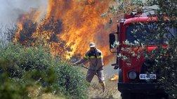 Σε ύφεση η φωτιά που ξέσπασε στα Καλύβια