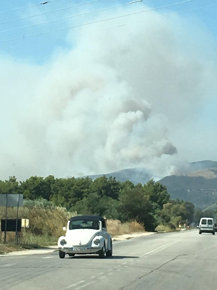Ζάκυνθος: Στο Κερί η φωτιά - Εκκενώνονται σπίτια - εικόνα 4