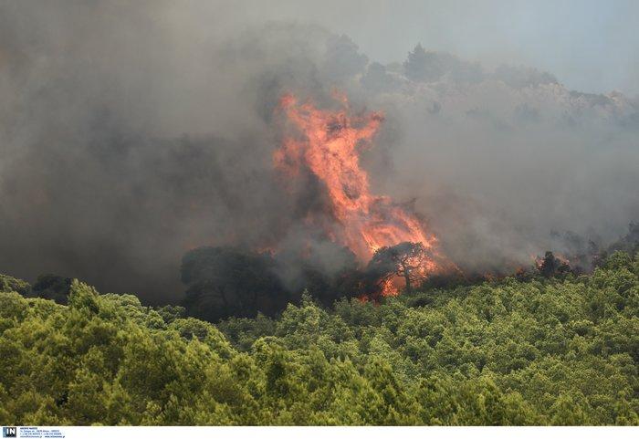 Ζάκυνθος: Ανεξέλεγκτη η φωτιά - Εκκενώθηκαν χωριά, κάηκε σπίτι - εικόνα 4