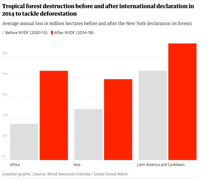 H καταστροφή των τροπικών δασών