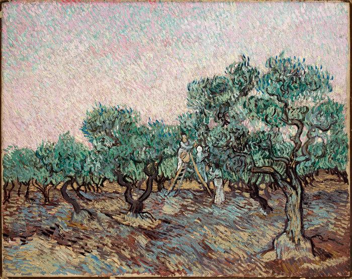 Vincent van Gogh(1853-1890)La cueillette des olivesΗ συγκομιδή της ελιάςOlive PickingΔεκέμβριος 1889 | December 1889Λάδι σε καμβά | Oil on canvas73.5 × 92.5 cm