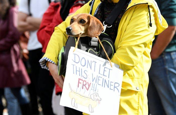 Η ομιλία της Γκρέτα εμπνέει τις διαδηλώσεις για το κλίμα - εικόνα 2