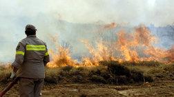 Μάχη με τις φλόγες σε Εύβοια και Αργολίδα