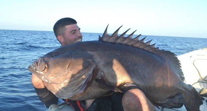 Μεγάλη ψαριά στα Χανιά! Δεν χώραγαν και οι δύο στη φωτογραφία