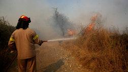 Πυρκαγιά σε δασική έκταση στις Σπέτσες