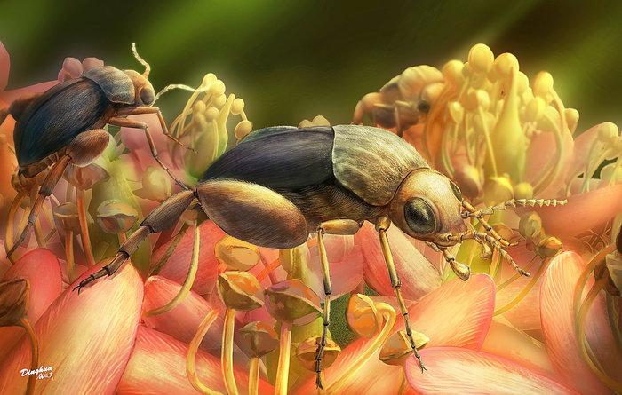 Αποκαλύφθηκε το αρχαιότερο απολίθωμα επικονίασης σε φυτό