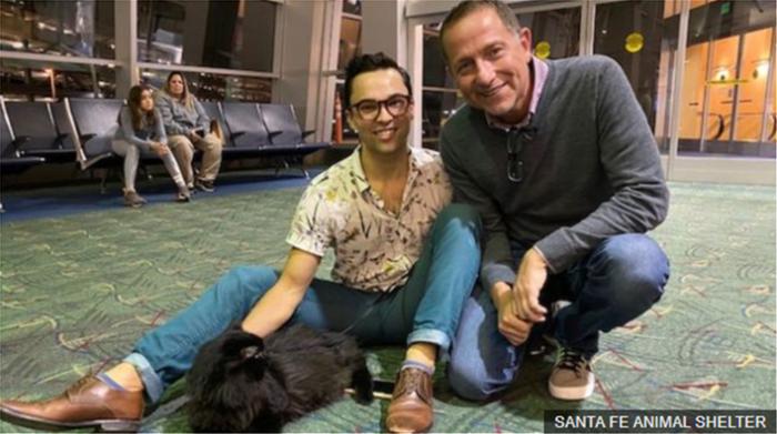 Βρέθηκε ζωντανός στο Μεξικό ο αγνοούμενος γατούλης - 1.900 χλμ μακριά