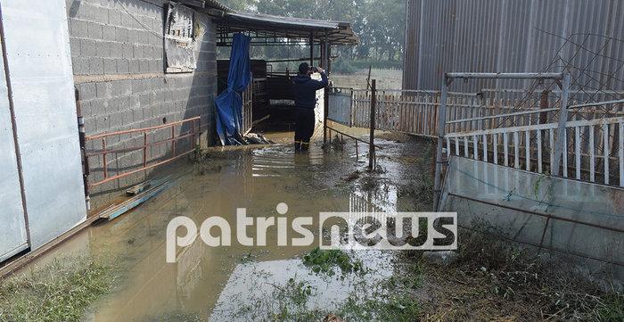 Καταστροφές από την κακοκαιρία - Ζημιές σε Ηλεία, Θάσο, Καβάλα - εικόνα 7
