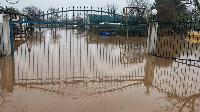 Απίστευτη καταστροφή στη Θάσο - Σε κατάσταση έκτακτης ανάγκης - εικόνα 10