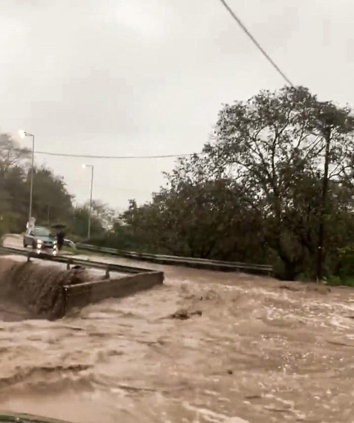 Εικόνες καταστροφής στη Θάσο - Μετράει τις πληγές του το νησί - εικόνα 4