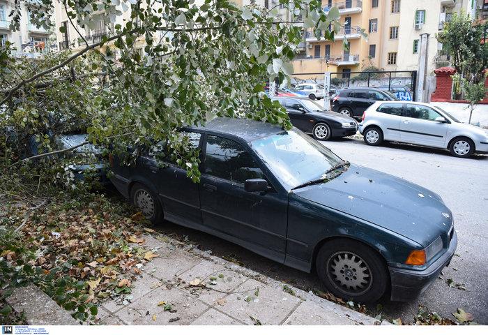 Επεσαν δέντρα και καταπλάκωσαν αυτοκίνητα στη Θεσσαλονίκη  [Εικόνες] - εικόνα 6