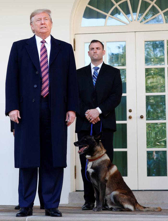 Ο Τραμπ παρασημοφόρησε τoν Κόναν: Ο σκύλος που κυνήγησε τον αλ Μπαγκντάντι - εικόνα 2