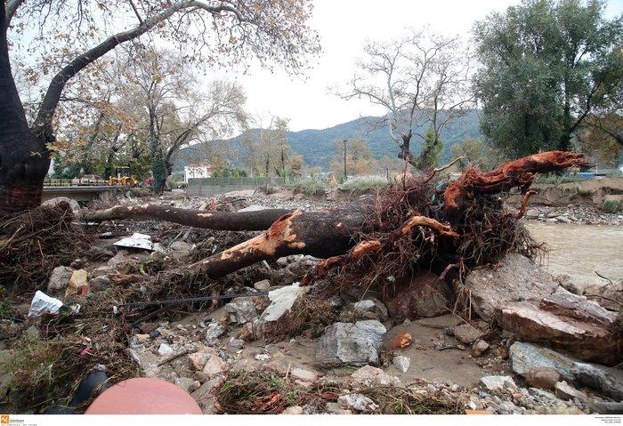 Εικόνες καταστροφής και στη Χαλκιδική από την κακοκαιρία - εικόνα 4
