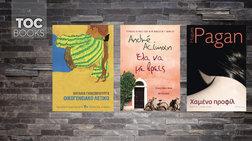 toc-books-o-erwtas-i-mustiriwdis-gunaika-kai-ena-oikogeneiako-xroniko