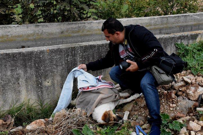 Θηροφύλακας σώζει σκύλο από αρδευτικό κανάλι στο Άργος - εικόνα 8