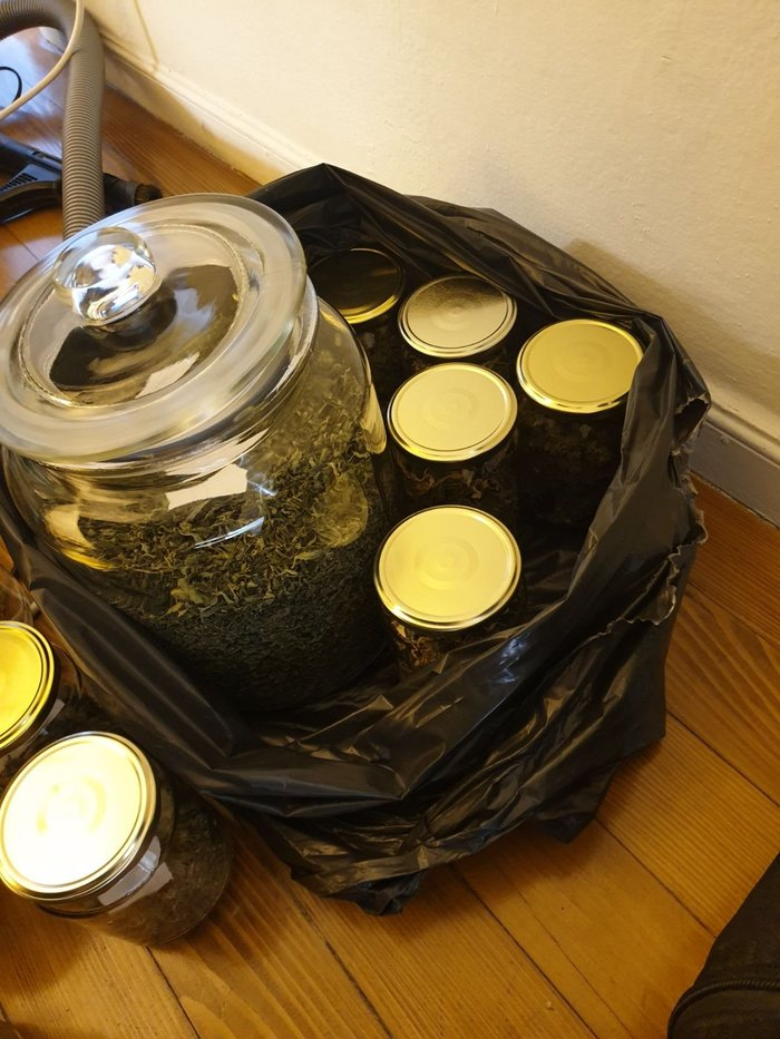 Θεσσαλονίκη: 52χρονος είχε στήσει φυτώριο κάνναβης μέσα σε διαμέρισμα! - εικόνα 3