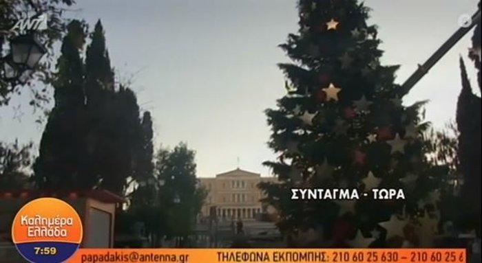 Το δέντρο της Πίζας: Γέρνει τώρα το χριστουγεννιάτικο δέντρο στο Σύνταγμα - εικόνα 2