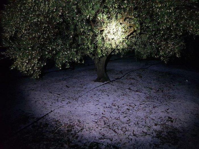 Σάρωσε τη χώρα η «Διδώ»: Πλημμύρες, χιόνια και χαλάζι - εικόνα 4