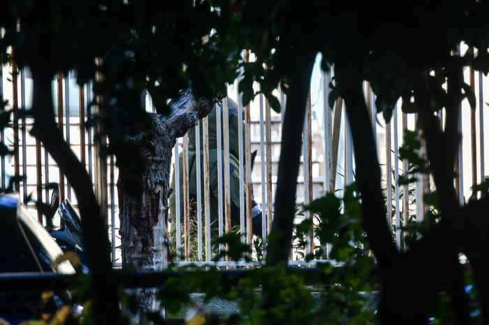 Σοκ: Η βόμβα στο ΑΤ Ζωγράφου ήταν γεμάτη καρφιά - ήθελαν νεκρούς - εικόνα 2
