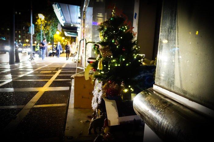Συγκινητικό: Αστεγος στόλισε δέντρο στο σημείο που κοιμάται - εικόνα 3