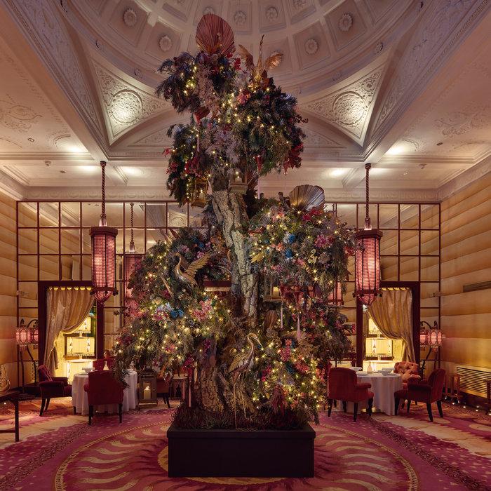 Sketch tree by Ricky Paul Flowers, London