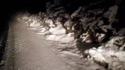 Έπεσαν τα πρώτα χιόνια στην Πάρνηθα! [εικόνες & βίντεο]