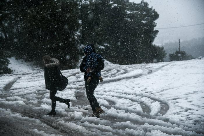 ΕΜΥ: Σφοδρή και τη Δευτέρα η «Ζηνοβία» - Πού θα χιονίσει