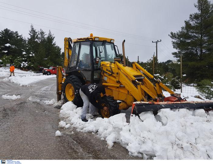«Σαρώνει» η Ζηνοβία: Χιόνια, διακοπές ρεύματος, κλειστοί δρόμοι [εικόνες] - εικόνα 13