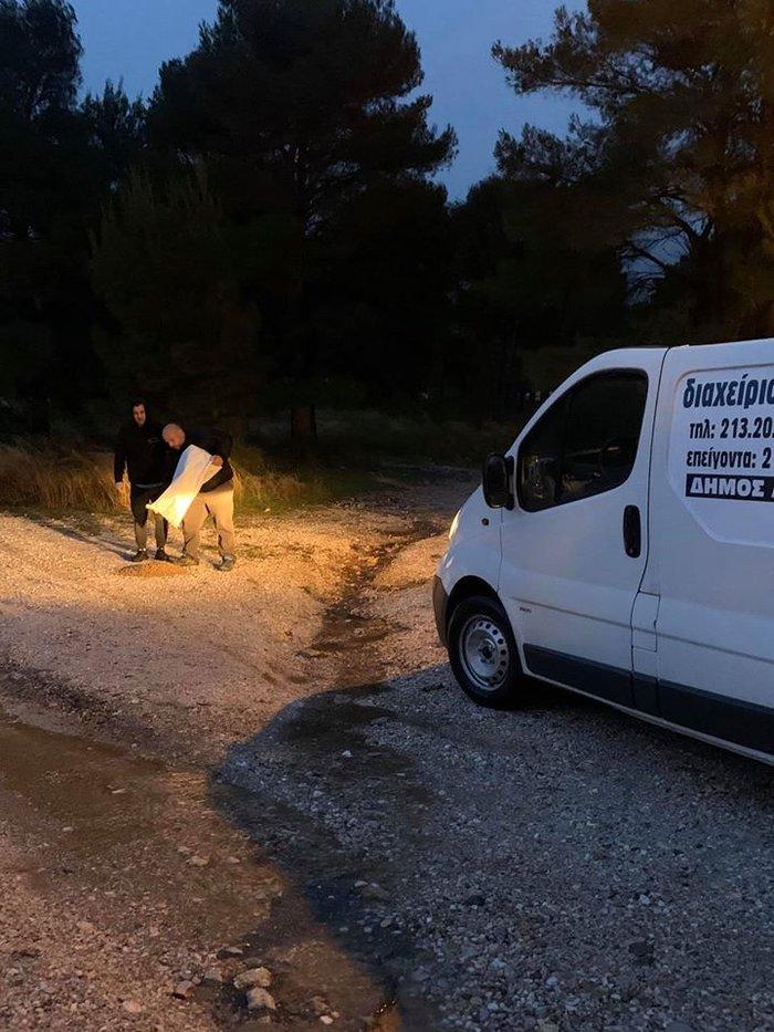Μπράβο: Ο Δήμαρχος Αχαρνών έστειλε υπαλλήλους να ταΐσουν τα αδέσποτα - εικόνα 2