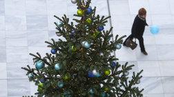 Ανακύκλωση των χριστουγεννιάτικων δένδρων;- Και όμως γίνεται...
