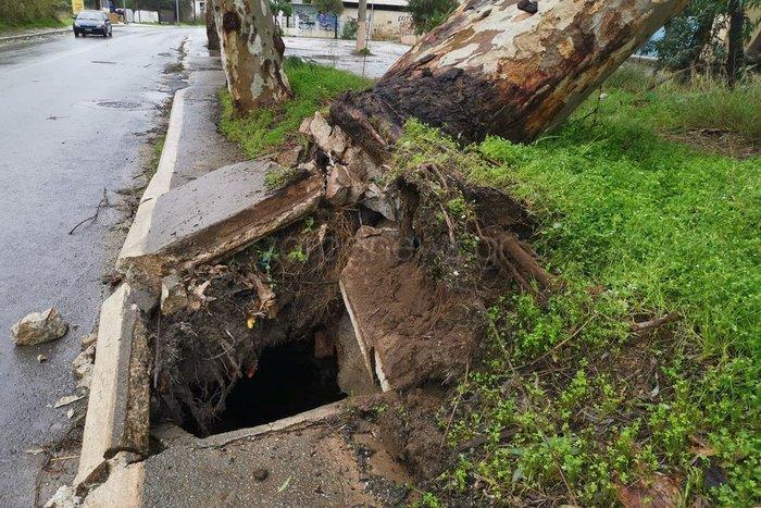 Χανιά: Κατολισθήσεις και απεγκλωβισμοί - ξεριζώθηκαν δέντρα - εικόνα 3
