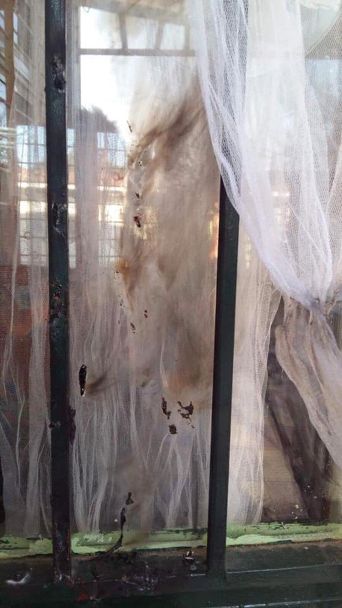 Βανδαλισμοί στο νηπιαγωγείο στο Μελλισοχώρι Θεσσαλονίκης [εικόνες]