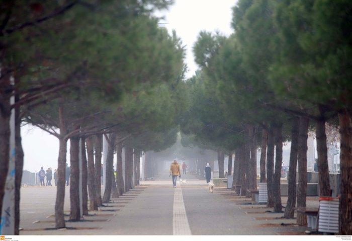 Ομίχλη στη Θεσσαλονίκη - Εντυπωσιακές εικόνες στο αεροδρόμιο Μακεδονία - εικόνα 4
