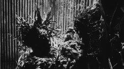 Η ταινία Τetsuο του Shinya Tsukamoto στην Γκαλερί Citronne