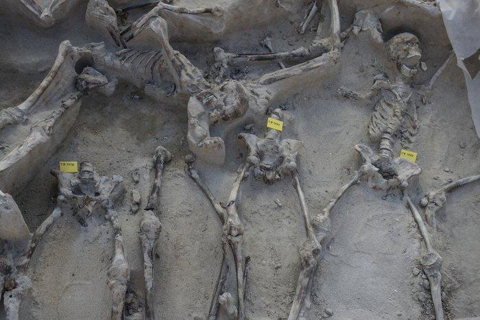 Άμεσος κίνδυνος να καταστραφούν οι «Δεσμώτες του Φαλήρου» - εικόνα 3