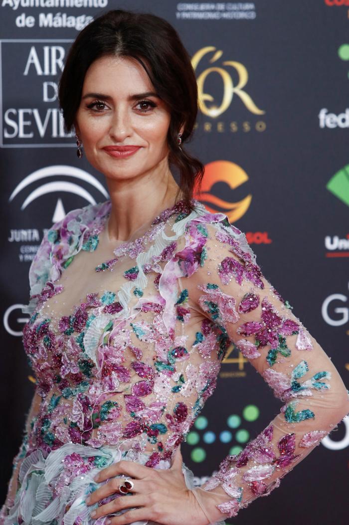 Πενέλοπε Κρουζ: Εμφάνιση με παραμυθένιο φόρεμα στα βραβεία Γκόγια - εικόνα 4