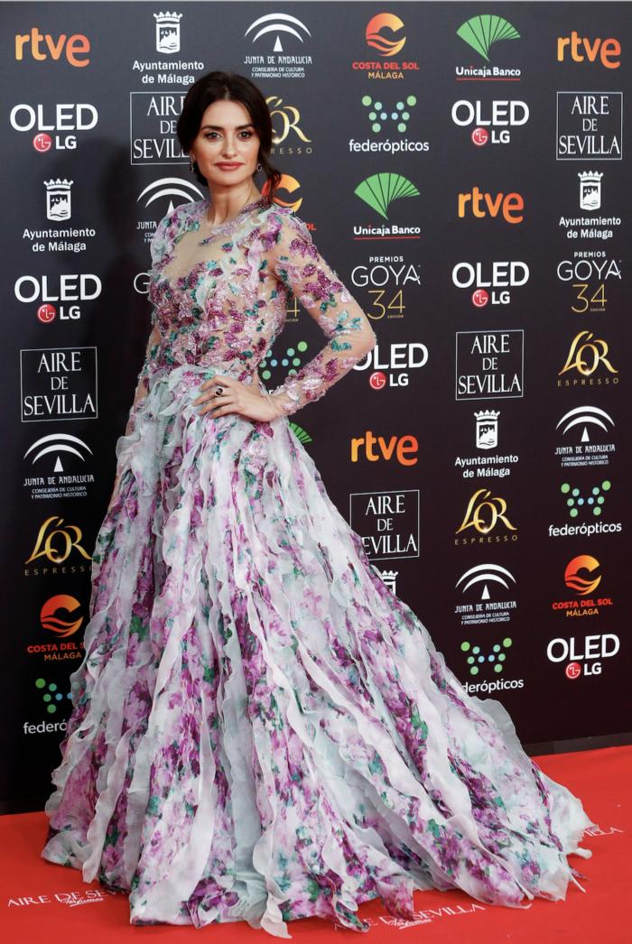 Πενέλοπε Κρουζ: Εμφάνιση με παραμυθένιο φόρεμα στα βραβεία Γκόγια - εικόνα 5